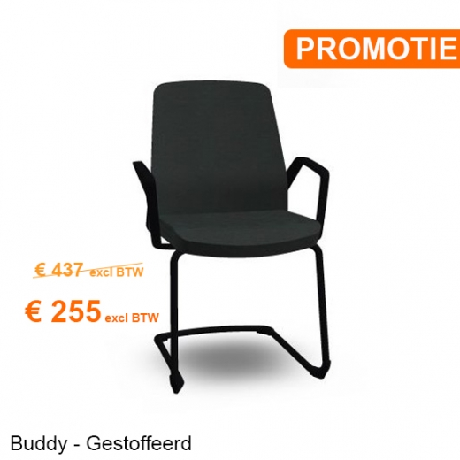 Interstuhl - BUDDYis3 550B - Cantilever with Armrest - PROMO